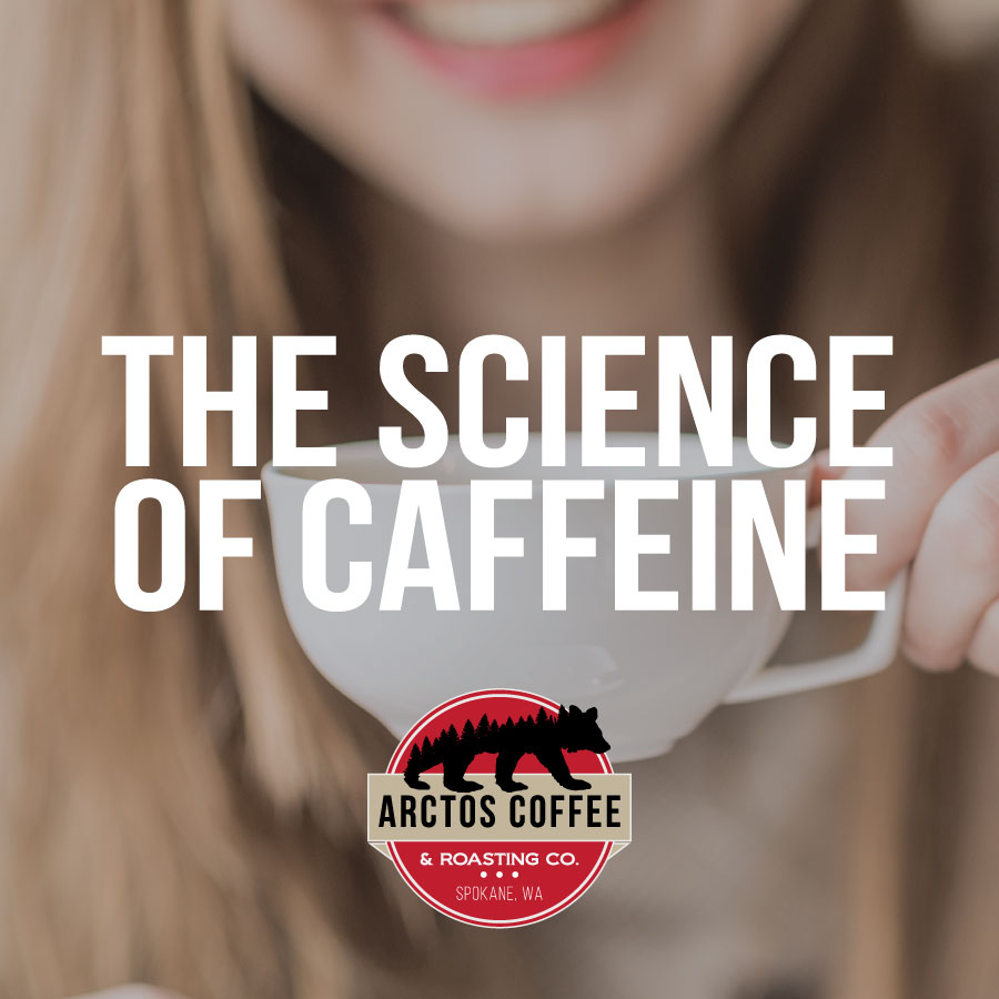 Arctos-Caffeine