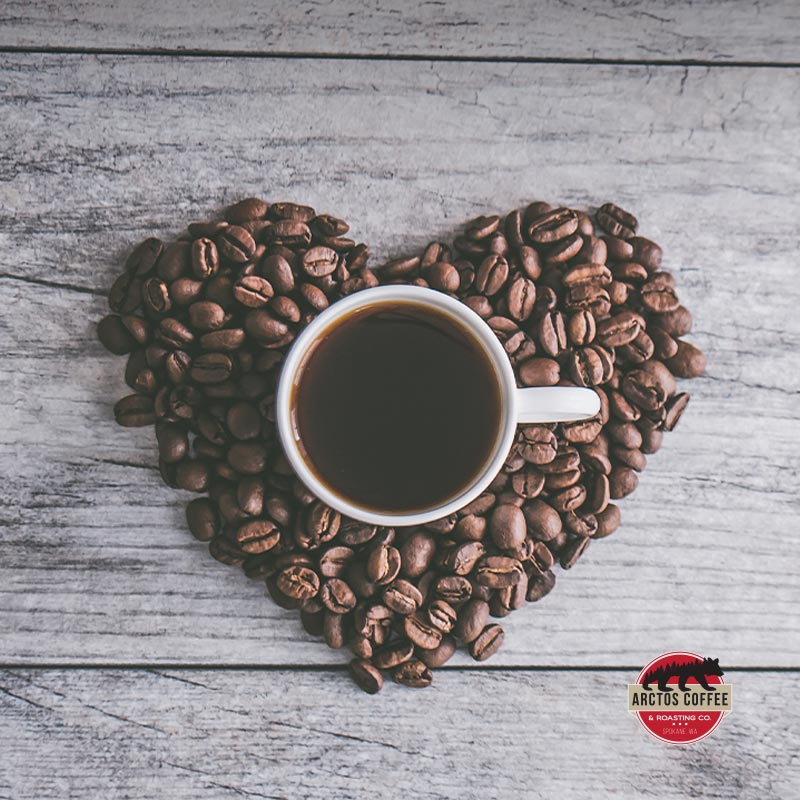 Arctos - How Coffee Can Be Good for Your Liver